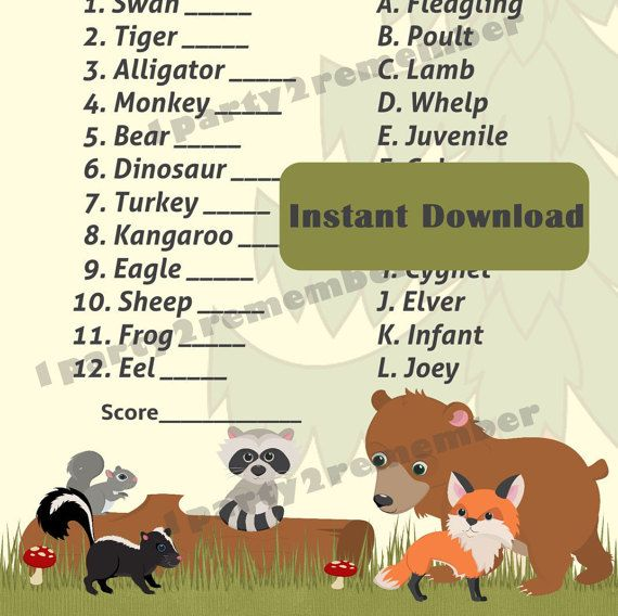 All About Baby Shower Game Guess The Baby Animal Name From