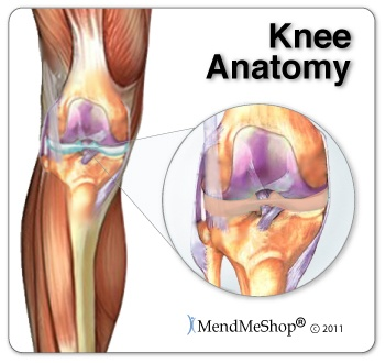 Ok so me being the dummy I am have been over doing it and now I have a lot of knee pain. You should always take a break once in a while from working out and switch up the parts your body that you work out so that you don't overuse a part of the body and injure it. And if you do mess your knee up here are some great tips to recooperate.