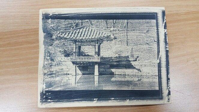 Kwon. Cyanotype Photogram 2. 2016
