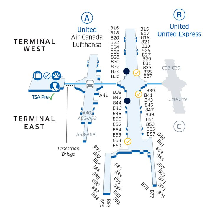 Colorado Airport: See Text Alternative After This Terminal Map