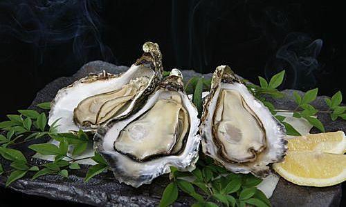 広島県産・宮島牡蠣 「大一粒かき小町」