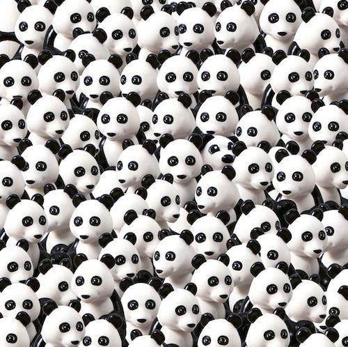 Zoek de hond tussen de panda's