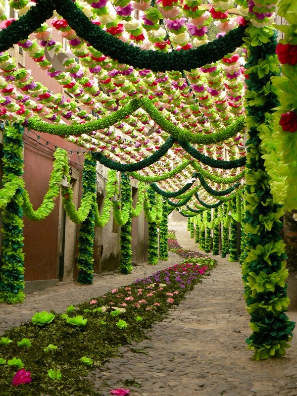 Embelished streets (with flowers) for the Festivities ot the Tabuleiros, Tomar #Portugal