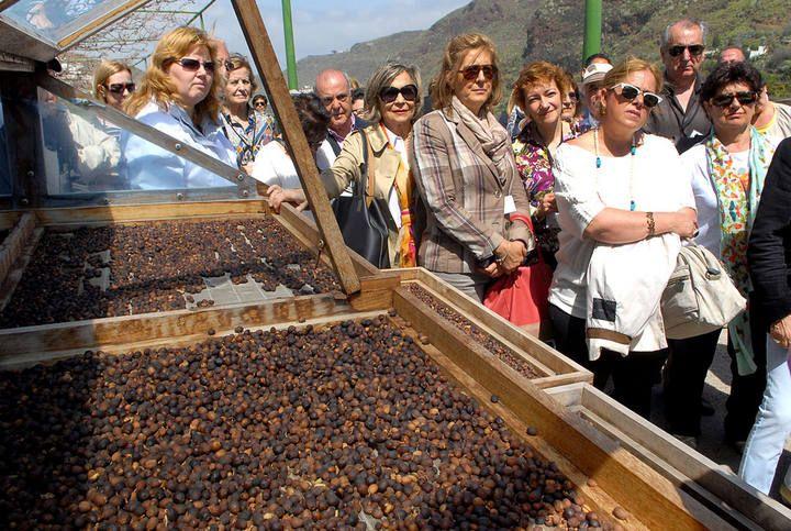 Los mejores cocineros del país visitan Gran Canaria