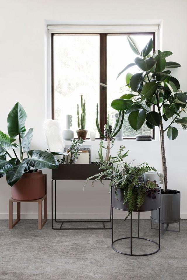 Salon Cosy Idees Deco Pour Un Salon Chaleureux Et Cocooning