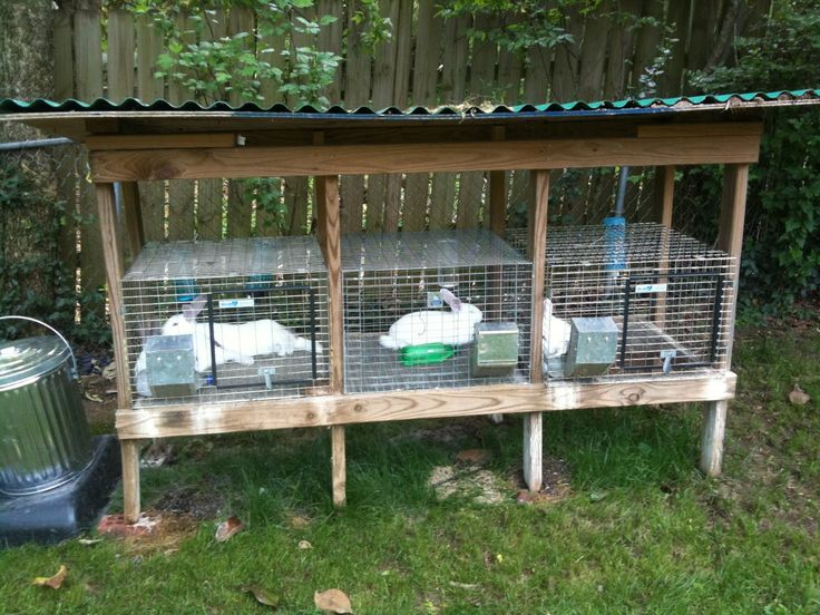 Great Rabbit cages for a backyard. Could run electric wire at the bottom to  protect from raccoons/dogs/possums/etc - 46 Best Rabbits Images On Pinterest Rabbit Hutches, Raising