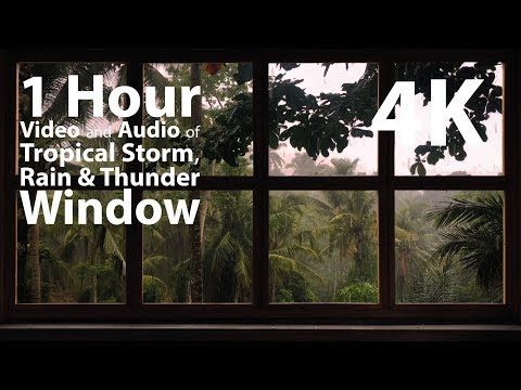 4K - Tropical Storm Window with Rain & Thunder - relaxation