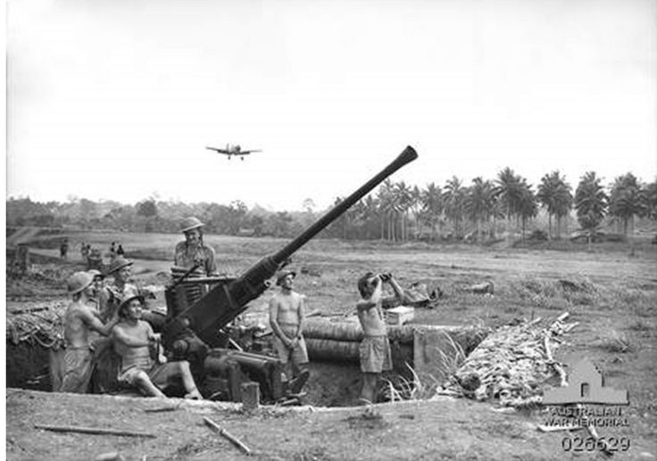 A Kittyhawk comes in to land at No. 1 Airstrip, guarded by a Bofors 40mm anti-aircraft gun of the 2/9th Light Anti-Aircraft Battery.