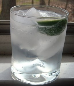 The Perfect Gin & Tonic.  Or as I say, teh perfect summer drink!  This one is from Soup is not a Finger Food.