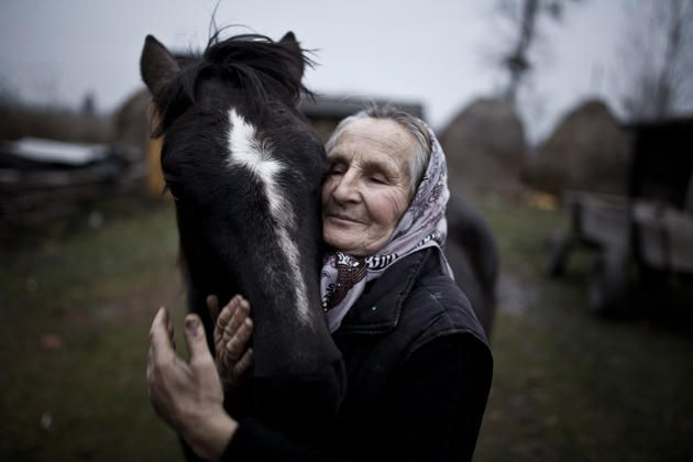 Image Description: The photograph shows Tatiana, an inhabitant of Shatsk, Ukraine with her horse. In Ukrainian villages, horses remain an indespensible work force in farm life.