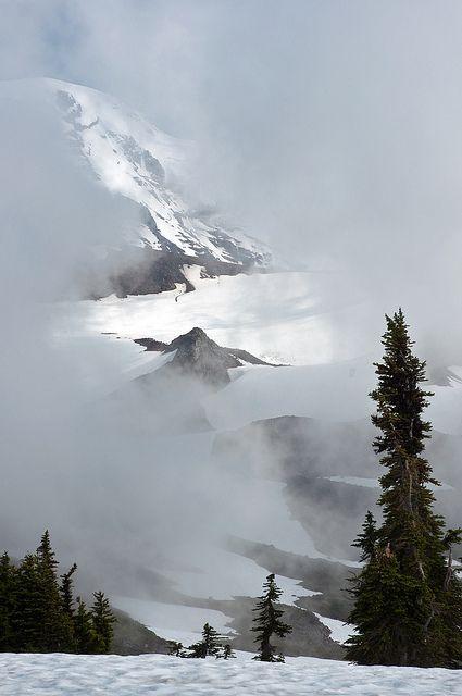 Fog, Mount Rainer National Park, Washington, United States. www.facebook.com/loveswish