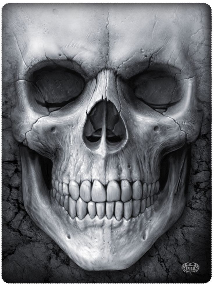 Big Face Skull – Skulls And Gear | skull n badassery ...