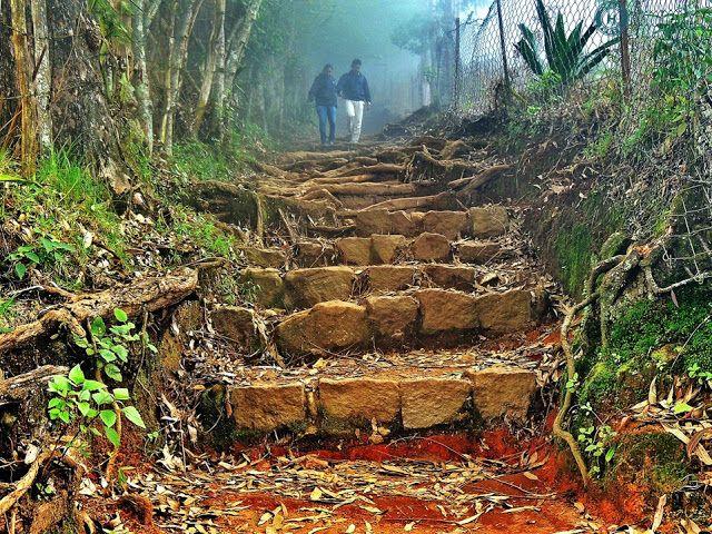 Kodaikanal-Munnar winter trekking expedition