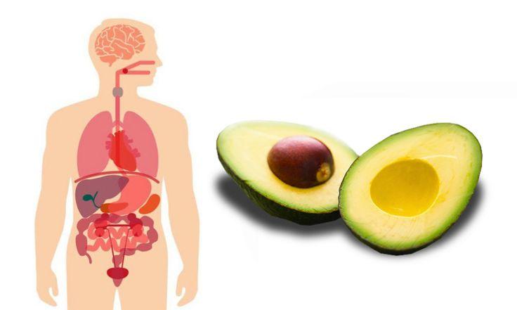 Avocado enthält, ausser ihren gesunden pflanzlichen Fetten, eine grosse Menge an lebenswichtigen Vitaminen wie z. B. Vitamin A, Vitamin D, Vitamin E, Vitamin K, Alpha-Carotin, Beta-Carotin, Lutein, Lycopin, Zeaxanthin, Biotin, Folsäure und Calcium.