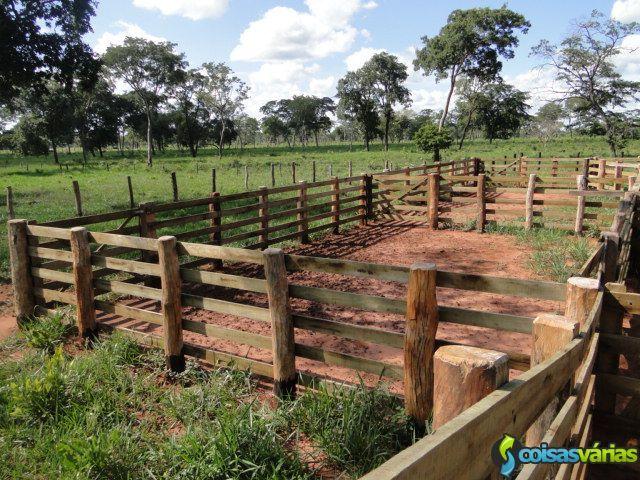 Fazenda à Venda na Região de Nova Andradina / MS - Ligue: ( 14 ) 9.9707-3330  Casa Verde MS - ( 14 ) 9.9707-3330 - Falar com SILVIO - Corretor Profissional de Imóveis Rurais - CRECI Nº 65.970-F
