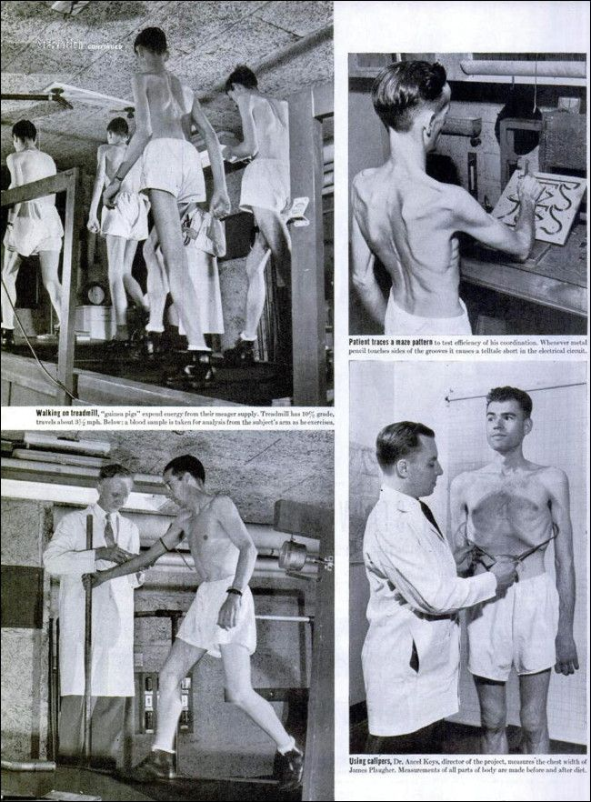 The Great Starvation Experiment, 1944-1945