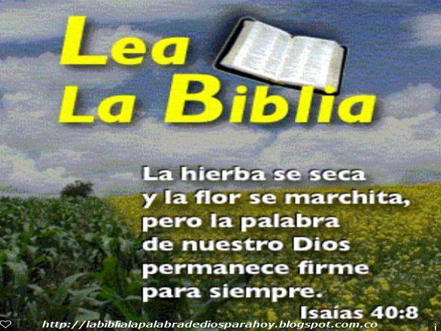 La Biblia La Palabra De Dios Para Hoy: Como hablar con Dios - La palabra diaria de Dios