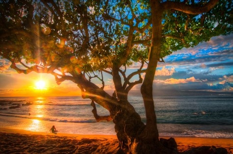 sunset: Sunsets Beach, Beach Sunsets, Funny Pictures, Exotic Beach, Fresh Collection, Sunsets Pictures, Beach Photographers, Beautiful Pictures, Landscapes Photography