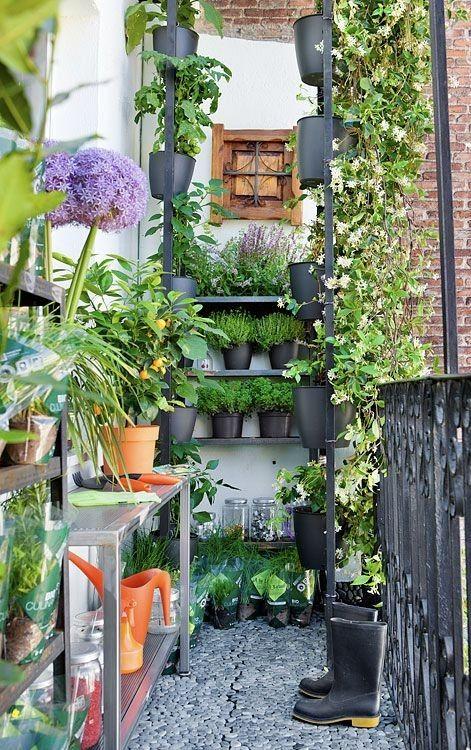 M s de 1000 ideas sobre jardines verticales caseros en for Jardines verticales caseros