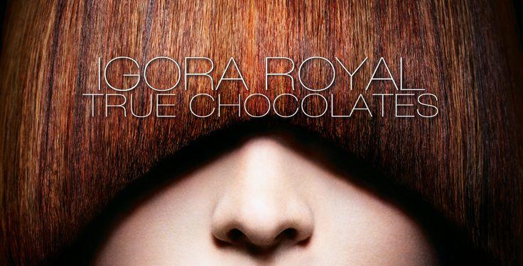 IGORA ROYAL Colour Worlds TRUE CHOCOLATES