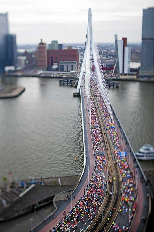 Marathon 2013, Rotterdam, Zuid-Holland.