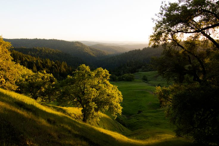 Leonard Lake Reserve | Nature preserve in the heart of the redwoods - good place for a reunion, but up by Ukiah