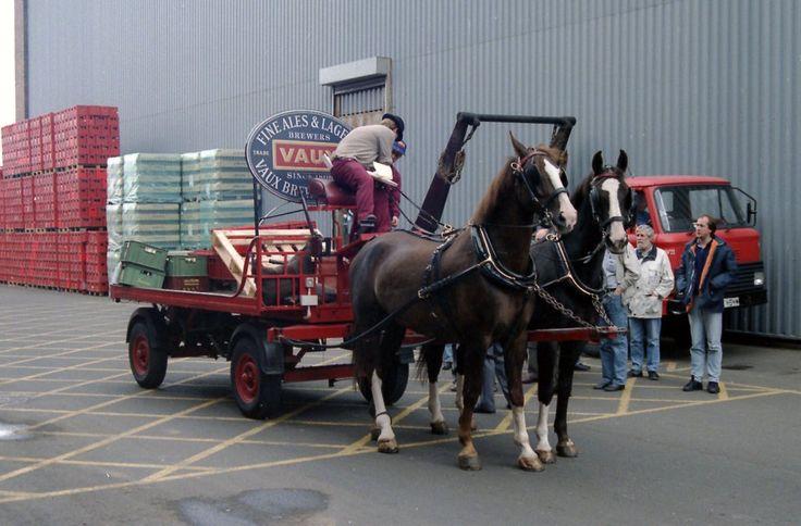 tynexwear - horse dray vaux brewery sunderland JL