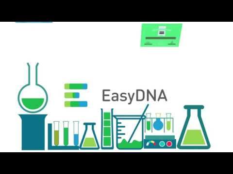 DNA Testing and Home DNA Test Services | Paternity Test - $119 only