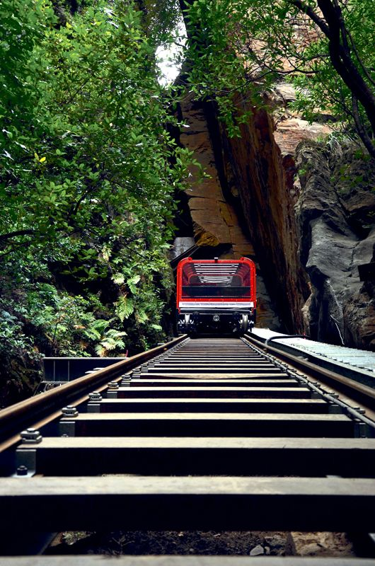 Scenic Railway emerges from the cliff-side tunnel