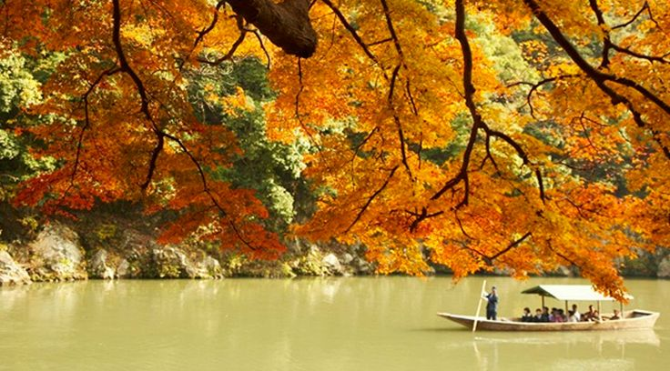 Kyoto, Japan. Our destination of choice for 2015  www.kingdom-london.com