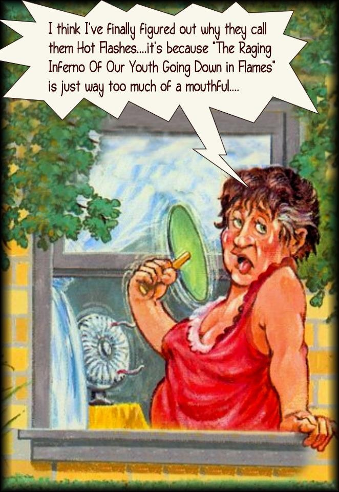 Funny Memes About Menopause : Best hot flashes images on pinterest ha funny