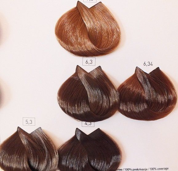 25+ unique Loreal hair color chart ideas on Pinterest Loreal - sample hair color chart