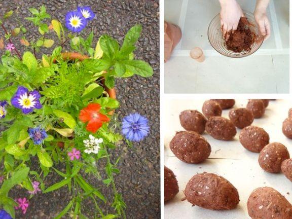 Samenbomben selber machen – eine tolle Geschenkidee für Weihnachten, als Gastgeschenk zur Hochzeit oder einfach nur zum Verschönern der Stadt. | http://eatsmarter.de/blogs/gruene-beete/samenbomben-selber-machen