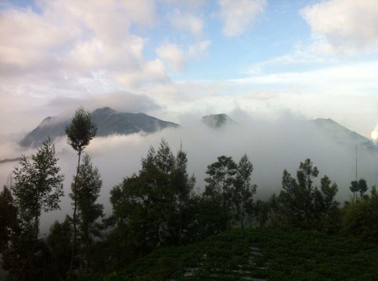 Gunung Praw 2565 MDPL