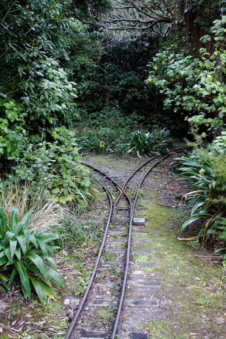 Palmerston North, New Zealand. The Esplanade railway. Great running grounds.