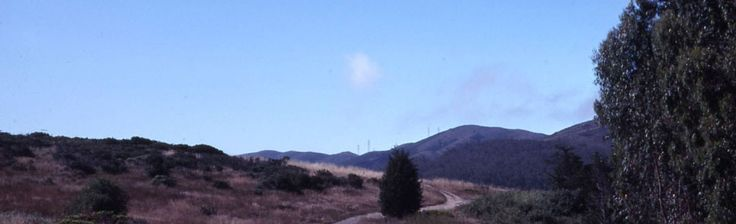 San Bruno Mountain State Park