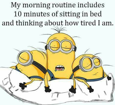 Minions, morning routine