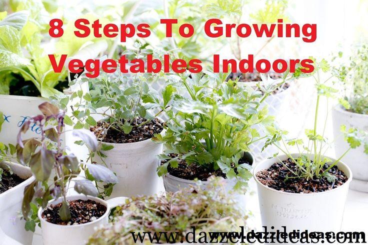 17 Best Images About Indoor Vegetable Gardening On Pinterest Gardens Vegetables And Vegetable