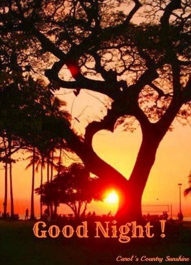 "Sunset ""Good Night!"" image via Carol's Country Sunshine on Facebook"