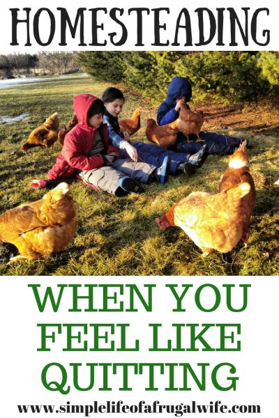 When you feel like quitting your homesteading life, what do you do? It is perfectly normal to have hard days on the homestead.