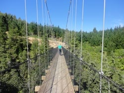 Arapuni Section | Waikato River Trails - Cycling Trails Waikato | Walking Trails in Waikato