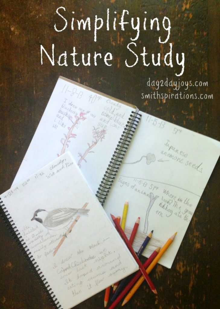 Simplifying Nature Study, common sense tips for making nature study enjoyable and educational, but not overwhelming