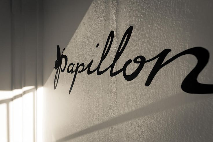 Papallon Hair | Paddington