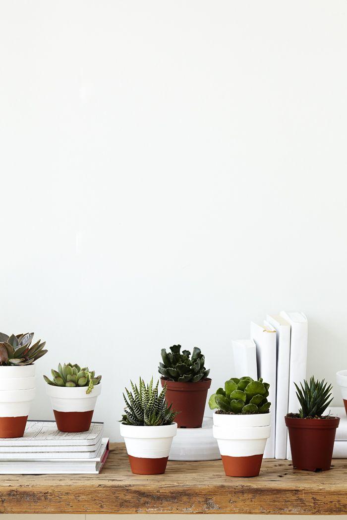 Peindre une partie des pots de fleurs brut en blanc