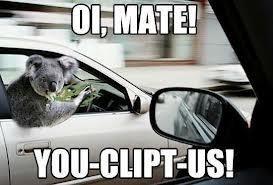 Nothing like some Aussie eucalyptus humor ;)