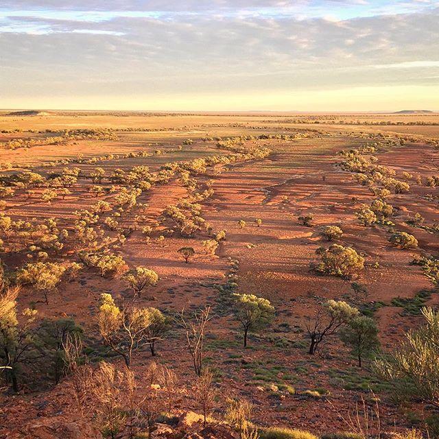 Bladensburg National Park Queensland Australia #iphone6 #lifeisbeautiful…