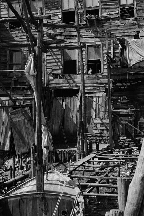 Magnum Photos View image only Ara Guler TURKEY.