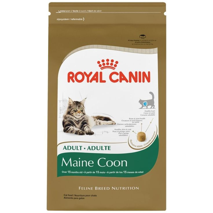 ROYAL CANIN BREED HEALTH NUTRITION Maine Coon dry cat food >>> Check out the image by visiting the link.