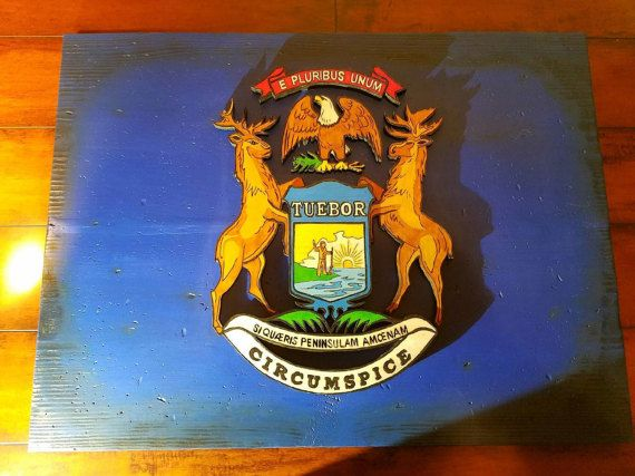 Wood Flag, Michigan State Flag, 3D, Handmade, Wooden, Wood Burned, Distressed, 3 Dimensional State of Michigan Flag, Scorched, Hand Painted