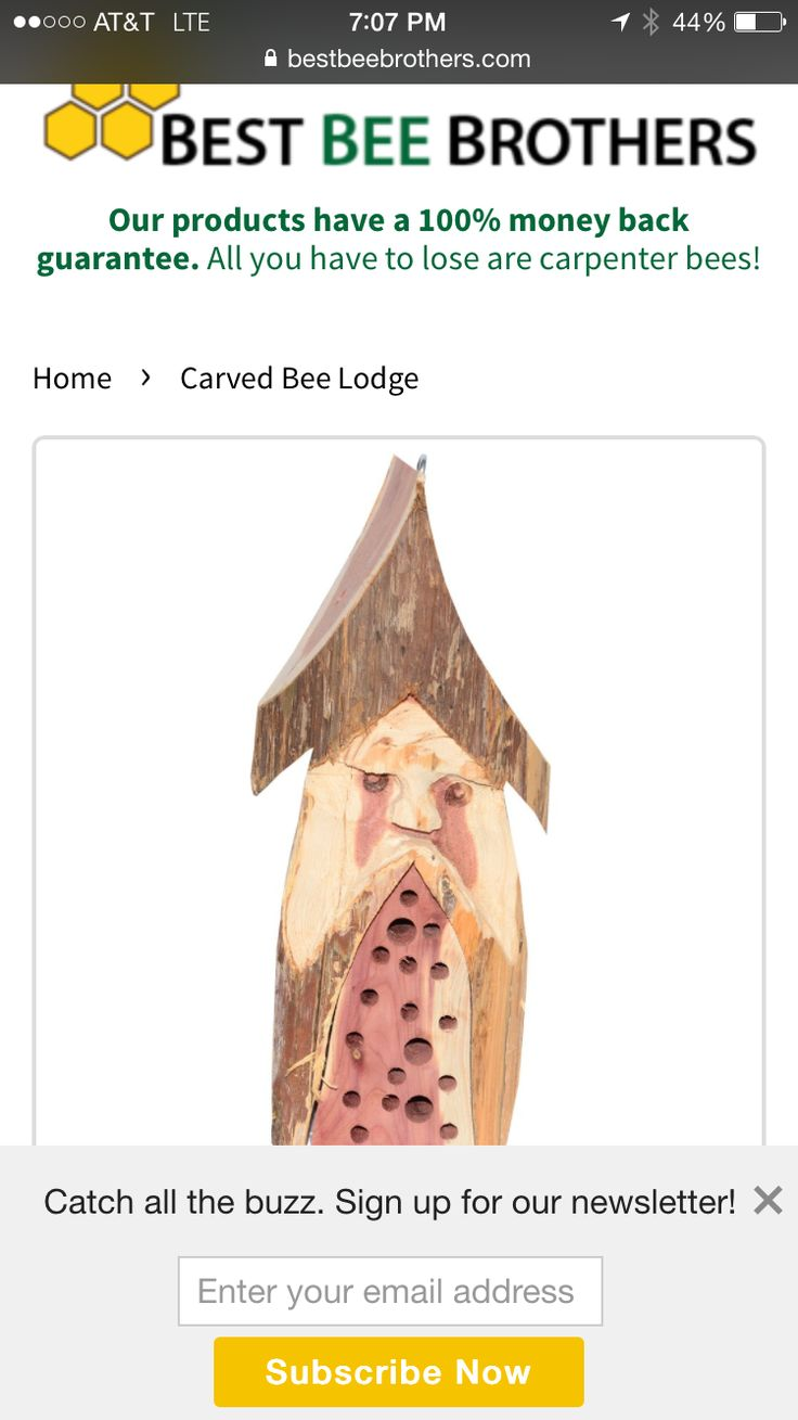 Hand Carved Bee Lodge From Best Brothers Savethebees Carpenter TrapBee